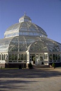 the Palm house (no reason)